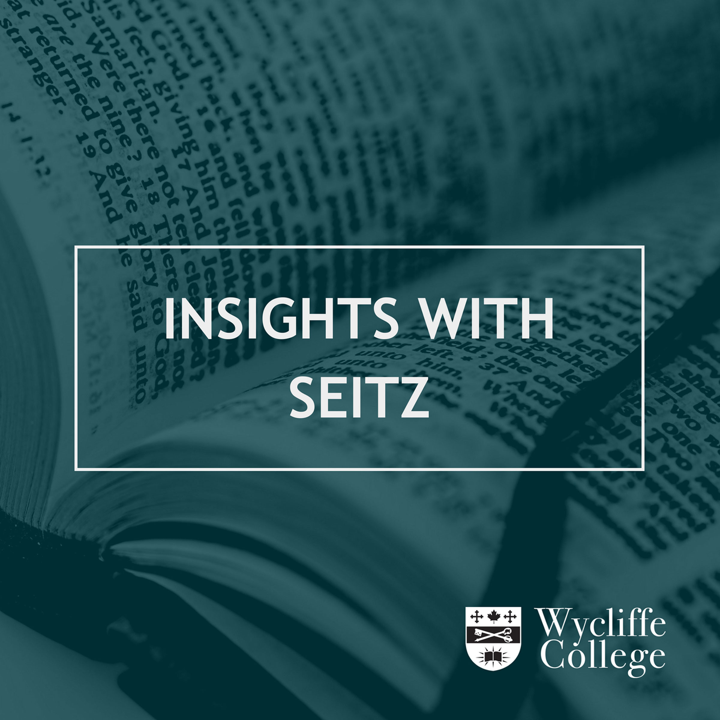 Insights with Seitz